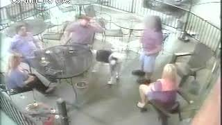 WATCH: Dog attacks woman in Arvada