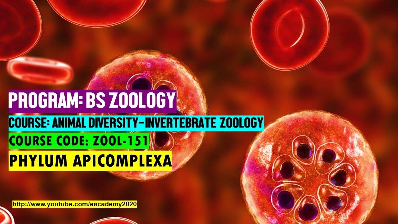 vetés gonococcusokra és Trichomonasra mi ez helminthiasis viszketés hogyan lehet eltávolítani