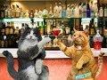 Анекдот от кота Миши про суд 2