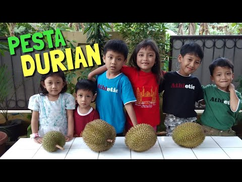 Pesta Durian 😋 Anak-Anak Makan Duren