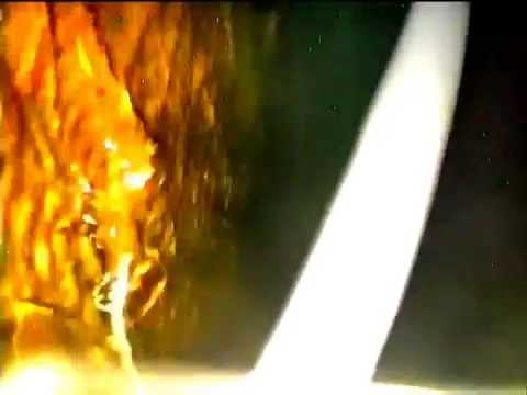 Inside Fukushima Reactor 2 Melted Core