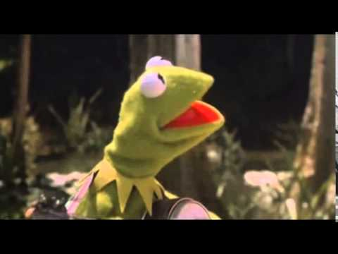 Kermit the Frog- Drink a Beer