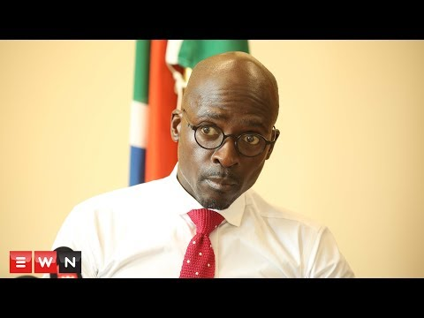 Gigaba: Ajay and Atul Gupta are not South African citizens