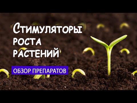 Стимуляторы роста растений: Вива, Максифол Динамикс, Рибав, Циркон и другие.