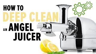 How to deep clean an Angel juicer