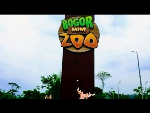 Bogor Mini Zoo Wisata Edukasi Anak di Bogor, Jawa Barat