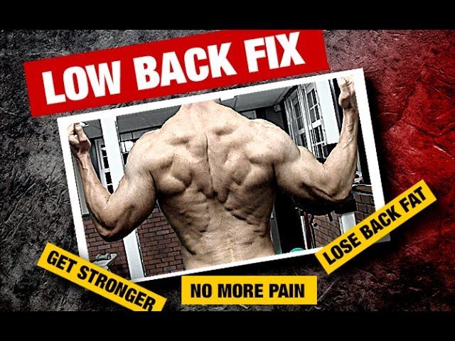 lose fat off lower back