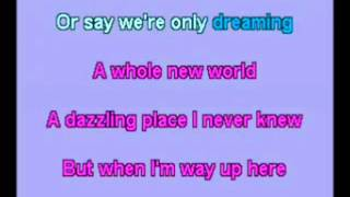 A Whole New World - Sing With me Version (male part only)