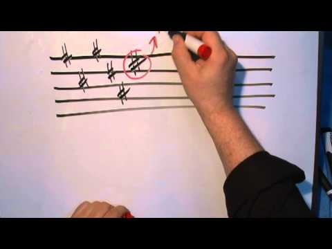 Music Theory 101 Part 1A