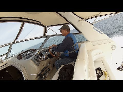 First Cruise With Boogaboo! Sea Ray Sundancer - Long Version