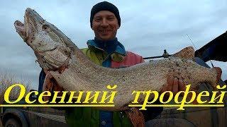 Трофейная щука.Трудовая рыбалка, от  р Кулан до р.Нура в поисках трофея.