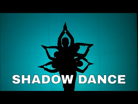 Bhaaga Sa - Chachi 420 - Hariharan Best Shadow dance MOBILE: 9967255438