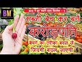 Vegetable And Fruits Business | सब्जी बेचकर बने करोड़पति | Business Mantra