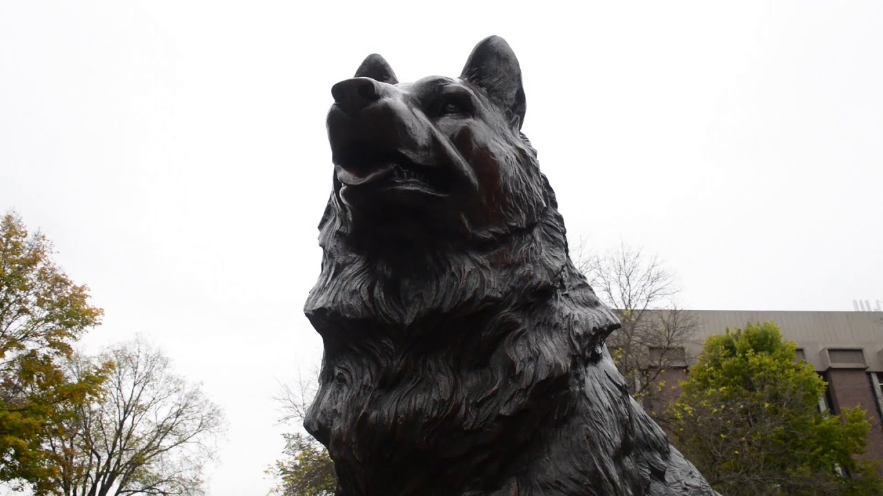 Preview image for Husky Traditions at Michigan Tech video