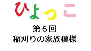 ひよっこ 第6回 「連続テレビ小説 ひよっこ Part1 (NHKドラマ・ガイド)...