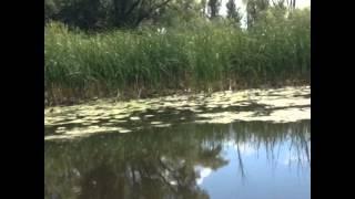 Поездка по реке Волга