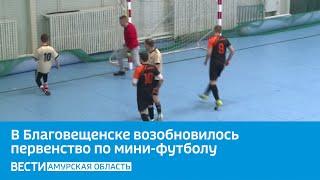 В Благовещенске возобновилось первенство по мини футболу