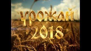 Праздник Урожая 2018
