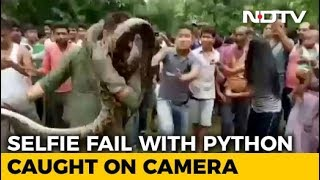 Selfie With Python Goes Wrong: Caught on Camera thumbnail