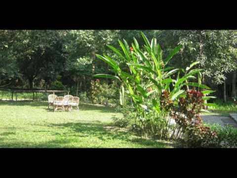Biratnagar - DavisHunter com