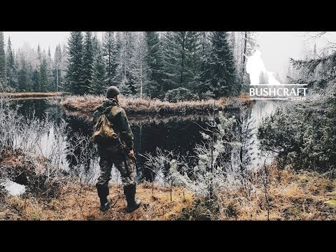 9 days adventure in the northern Russian taiga. Log cabin. The capercaillie hunt.