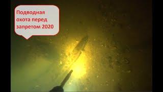 Подводная охота перед запретом 2020