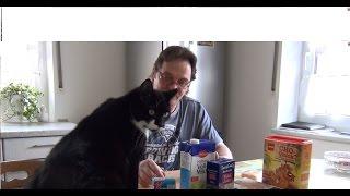Кот Вася помогает готовить  Tiramisu(Мой канал https://www.youtube.com/user/MrKifa48 Моя партнерка рекомендую https://youpartnerwsp.com/join?9638 Юмор, смешные ..., 2015-03-26T04:31:49.000Z)