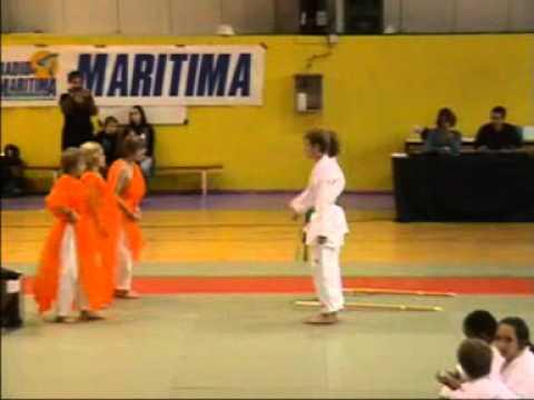 Istres sports karat do gala des 35 ans l 39 histoire des for Origine des arts martiaux