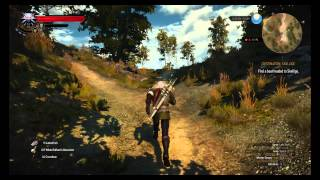Enhanced Feline Steel Sword Location The Witcher 3