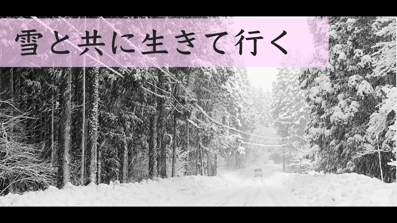 豪雪地区で暮らすという事【福井...