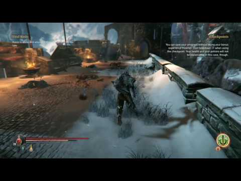 Lords of the Fallen: Attribute Point Glitch
