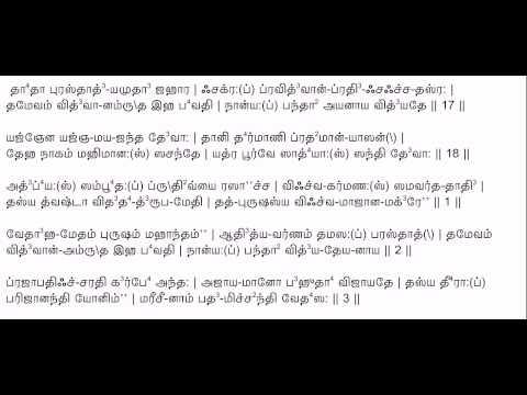 Purusha Suktam with Tamil Lyrics to chant along