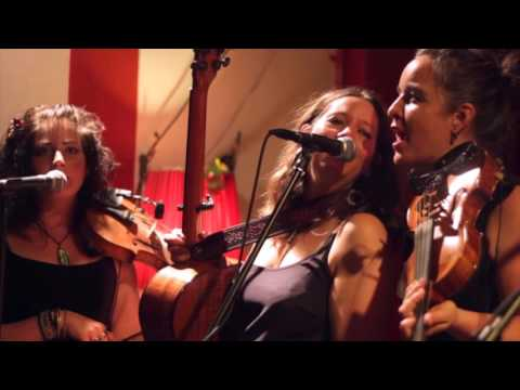 Stray Hens - The Hand Weaver & The Factory Maid (Live At Open Studio)