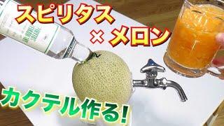 【スピリタス×メロン】本格カクテルをメロンスピリタスで作る! thumbnail