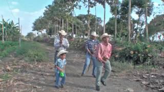 EL CABALLÍTO DE PALO - Proyecto Post Producción