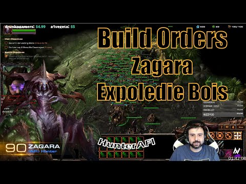 Best Build Orders Zagara Win Every Mission