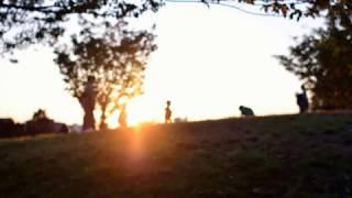 dawn  -  Hiroshi Fujiwara