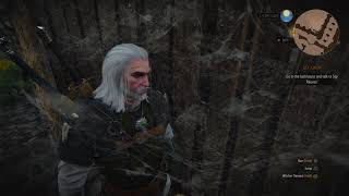 The Witcher 3: Wild Hunt – Complete Edition_20181016142352