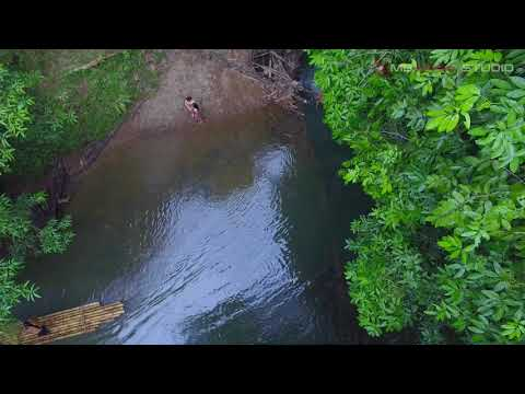 Malaysia Nature By Drone