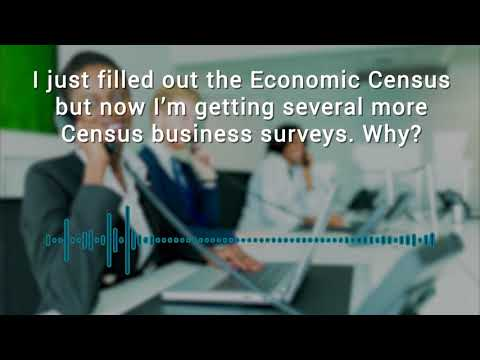 Who Knew? The Census Bureau Conducts Dozens of Business Surveys