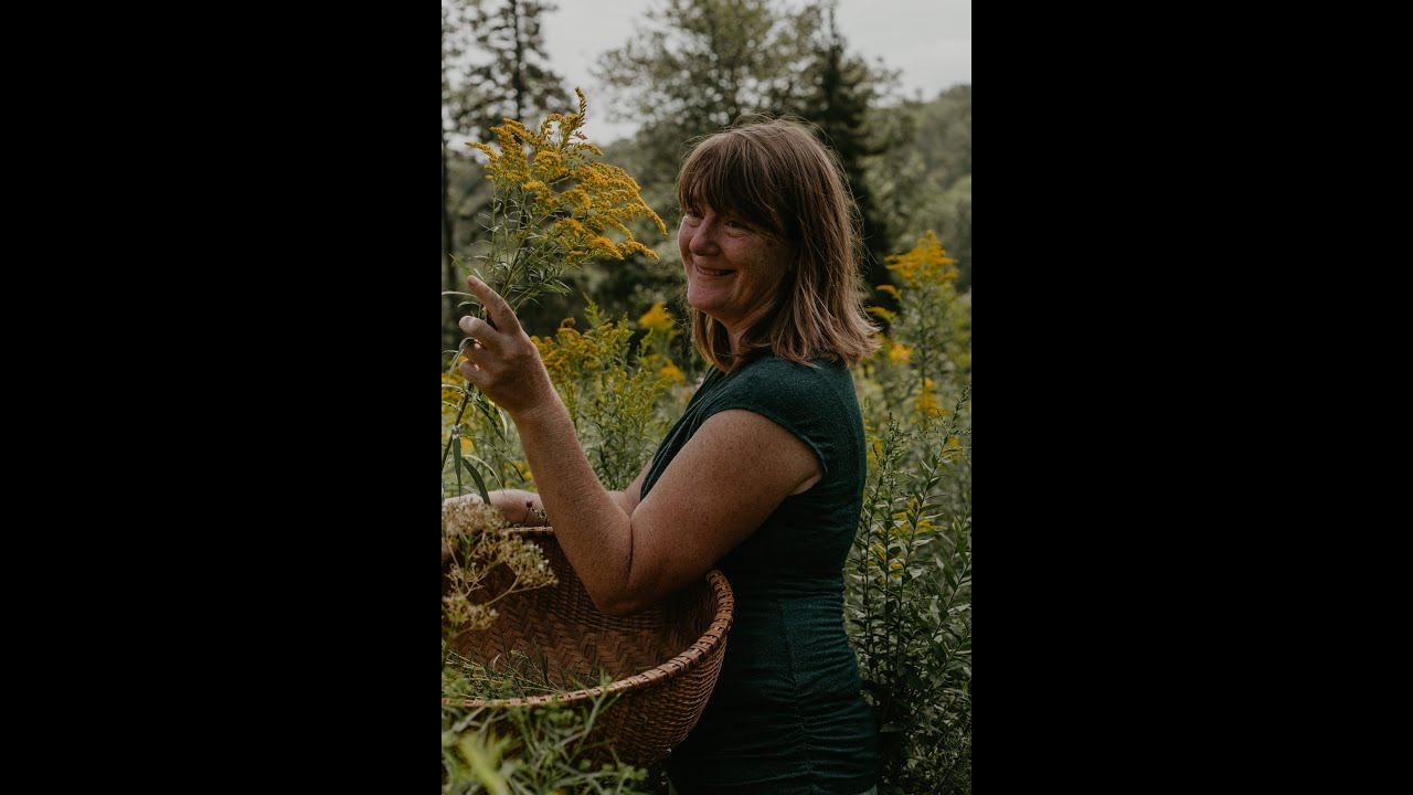DOWNLOAD: Sustainable Foraging With Brighid Doherty Founder Of Solidago School Of Herbalism On ...