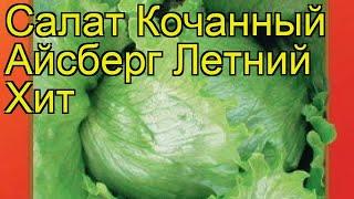 Салат кочанный (Айсберг Летний Хит). Краткий обзор, описание характеристик, где купить семена