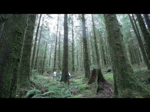 The Faerie Queene Short Film