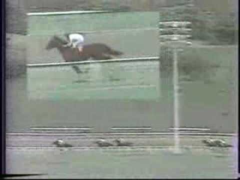 Clasico Jose Antonio Paez 1983