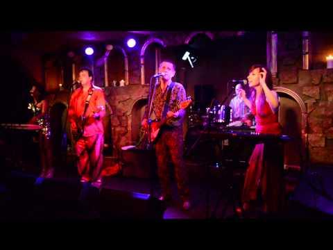 Red Elvises - My Love Is Killing Me (2013.07.13) mp3