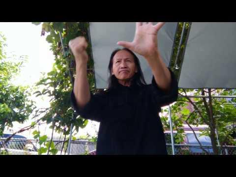Pan Jia Kung Fu - Upper body showing outdoor set