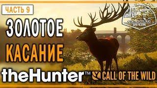 theHunter Call of the Wild #9