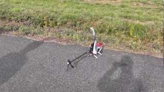 JR PROPO NEX E6 550!! 3D Flight!!