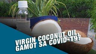 Kilala ang virgin coconut oil sa samu't sari nitong benepisyo balat, sugat at buhok ng tao. pero tinaguriang miracle oil, posible nga kayang maging ga...