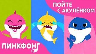 Если Акулы Счастливы | Пойте с Акулёнком | Пинкфонг Песни для Детей